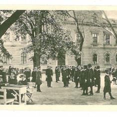 1069 - TIMISOARA, Girls High School - old postcard - unused - Carte Postala Banat 1904-1918, Necirculata, Printata