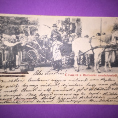 Targu Mures - Rascoala - Carte Postala Transilvania 1904-1918, Circulata, Fotografie