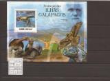 Guinea - Bissau - Galapagos fauna