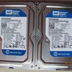 HDD 250GB SATA 16MB cache WD - Bonus cablu SATA-Garantie scrisa 6 luni-Factura - Hard Disk, 200-499 GB, Rotatii: 7200, SATA2