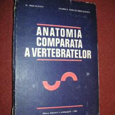 Anatomia comparata a vertebratelor - O. C. Necrasov, G. T. Dornescu - vol.1 - Carte Medicina veterinara