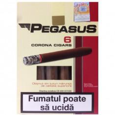 Tigari de foi Pegasus (din tutun de cea mai buna calitate) (55g)