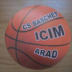 Program de meci baschet, ICIM Arad - Program meci