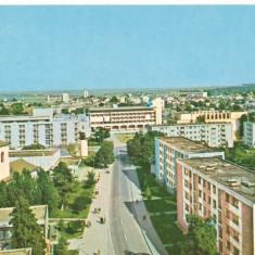 CPI (B6503) CARTE POSTALA - BOTOSANI. STRADA UNIRII - Carte Postala Moldova dupa 1918, Necirculata, Fotografie