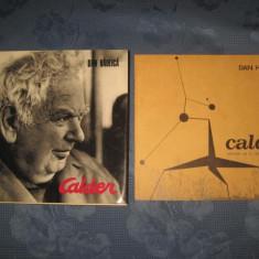 Dan Haulica-CALDER 1971. Sculptura in metal- Arta moderna. - Album Arta