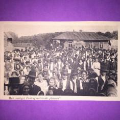 Bukowina - Dans popular - Hora - Carte Postala Bucovina 1904-1918, Circulata, Fotografie