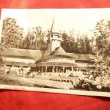 Ilustrata - Snagov - in parc ,circulat 1955 - Bucuresti, Circulata, Fotografie