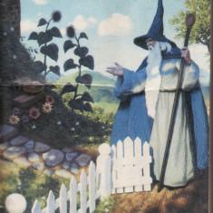 J.R.R. Tolkien - Hobbitul - 33393 - Roman, Rao, Anul publicarii: 2003