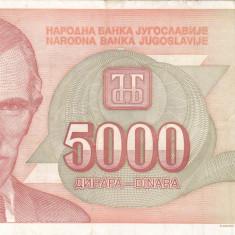 IUGOSLAVIA 5.000 dinara 1993 VF+++!!! - bancnota europa