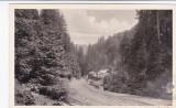 CARTE POSTALA  VALEA VINULUI  BISTRITA-NASAUD CIRCULATA 1943, Fotografie