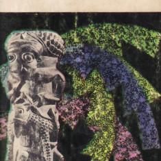 Furt de camile noaptea(372).Basme africaneVolumul II - 32501 - Carte Antologie