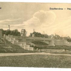3253 - TIMISOARA, Bridge - old postcard - used - Carte Postala Banat 1904-1918, Circulata, Printata