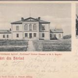 SALUTARI DIN BARLAD ORFELINAT  AGR. FERDINAND ZORLENI DOMENI AL MS REGELUI  1900
