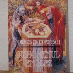 FENOMENUL ENGLEZ -DRAGOS PROTOPOPESCU - Studiu literar