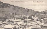 PUTNA(BUCOVINA)- FABRICA DE CIMENT SI BISERICA, Necirculata, Printata