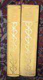 Scrieri alese  / A. Vlahuta ; ed. critica de Valeriu Rapeanu  Vol. 1-2