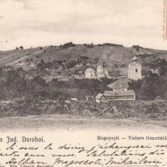 JUD. DOROHOI MOGOSESTI VEDERE GENERALA CIRC. 1904 EDITURA LIBRARIA BERCOVICI - Carte Postala Moldova pana la 1904, Circulata, Printata
