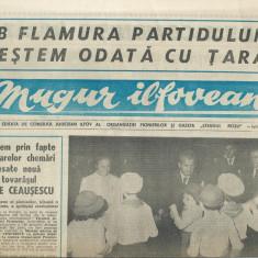 Ziar Mugur ilfovean / pionieri