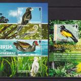 Montserrat 2009  fauna  pasari  MI 1461-64  klb. + bl.126   MNH  w25