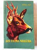 """""""DIN FAUNA NOASTRA"""", Ionel Pop, 1959. Tiraj 6160 exemplare"""