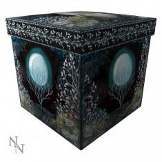 Taburet / cutie depozitare Mystic knight