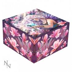 Cutie bijuterii cu oglindă Atracția elixirului