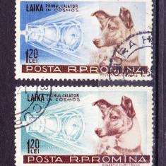 Timbre ROMANIA 1957/*447 = CATELUSA LAIKA - PRIMUL CALATOR IN COSMOS, Stampilat