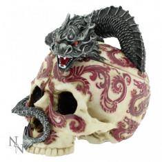 Cutie bijuterii Dragonul oriental