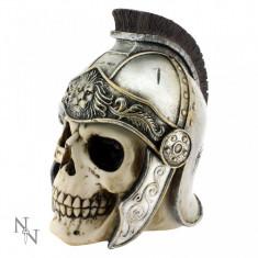 Cutie bijuterii Craniu de centurion