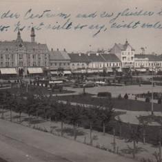 SATU MARE, PIATA REGELE CAROL, EDITURA SINGER NANDOR SATU MARE, CIRC. 1934 - Carte Postala Maramures dupa 1918, Circulata, Fotografie