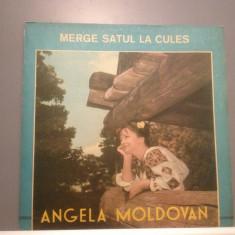 ANGELA MOLDOVAN - MERGE SATUL ... (EPE 01176/ELECTRECORD) - VINIL/Stare PERFECTA - Muzica Populara