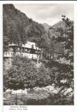 @ carte postala (ilustrata)-MASIVUL RETEZAT-Cabana Gura Zlata