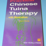 Practical Chinese Tuina Therapy with Illustrations - Pan Ching