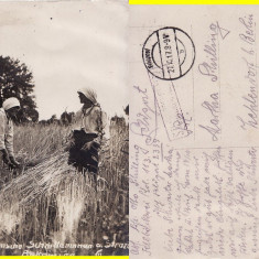 Bucovina (Suceava ) - Straja, Radauti -Tipuri-  foto WWI, militara, Circulata, Printata