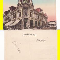 Lugos, Lugoj (Timis) - Besan Palota - Carte Postala Banat 1904-1918, Necirculata, Printata