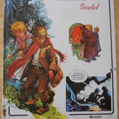 HANSEL & GRETEL - IN FRANCEZA - Carte de colorat