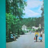 HOPCT 24899  VATRA DORNEI / PARCUL -JUD SUCEAVA -CIRCULATA