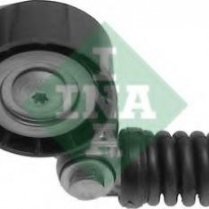 Intinzator curea, curea distributie RENAULT MEGANE I 1.9 D Eco - INA 534 0105 20 - Intinzator Curea Distributie