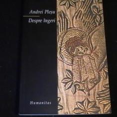DESPRE INGERI-ANDREI PLESU-286 PG-