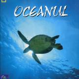 Patricia Daniels - Oceanul - 603309