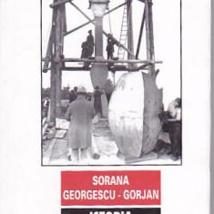 SORANA GEORGESCU-GORJAN - ISTORIA COLOANEI INFINITE - Carte sculptura