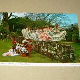 Costum traditional - Panama - 2+1 gratis - RBK15724