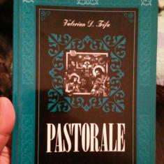 VIOREL D TRIFA PASTORALE 2003 160 PAGINI BISERICA ORTODOXA RELIGIE CRESTINISM