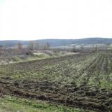 Teren agricol (2 loturi) 4951 mp, Strehaia - Teren de vanzare, Teren extravilan