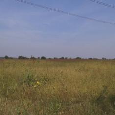 Teren 499999.45 mp (2 loturi), T7, Ciorogarla, Ilfov - Teren de vanzare, Teren extravilan