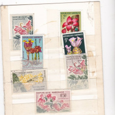 Diferite timbre st din CONGO FLORI
