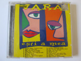 2xCD COMPILATII POP-ROCK-HIP HOP,ALBUMELE:VARA,ZI-LE DE VARA/CAT MUSIC 2001-2002, CD