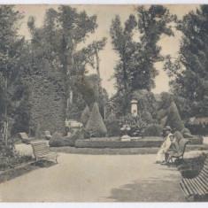 432 - Gorj, TG-JIU, Public Garden - old postcard - used - 1929 - Carte Postala Oltenia dupa 1918, Circulata, Printata