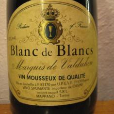 Blanc de blancs, cuvèe speciale, marquis de valdahon, vin mousseux de qualitè - Sampanie