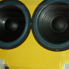 Difuzoare bas 20cm - Difuzor Marantz, Difuzoare bass, 41-80 W